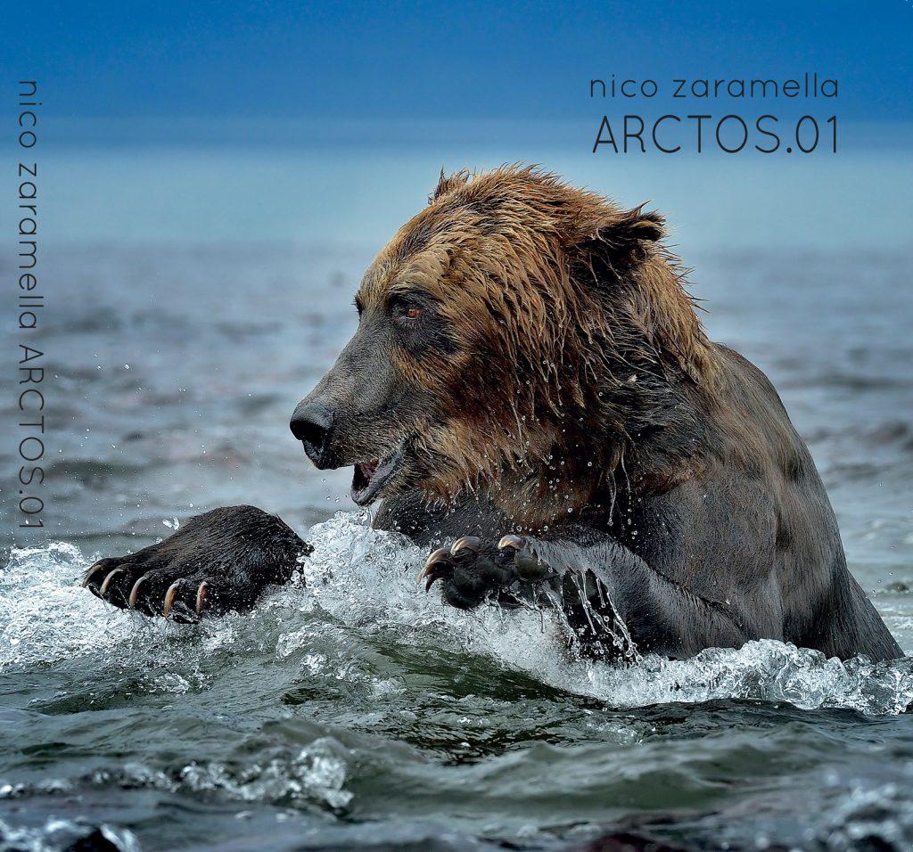 Copertina-ARCTOS