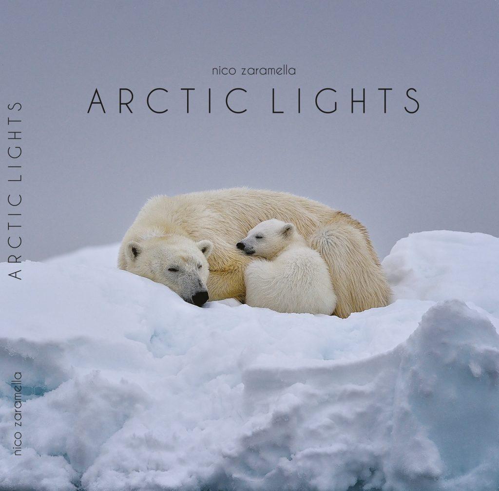 Copertina-Arctic-Lights